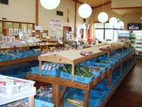道の駅 マキノ追坂峠・写真