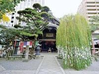 六角堂頂法寺・写真
