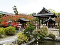 神泉苑・写真