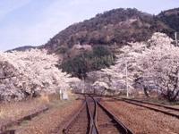 木津川畔・写真