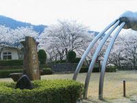 亀岡市七谷川野外活動センター・写真