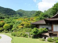 大河内山荘 庭園