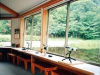 桂坂野鳥遊園