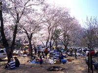笠置キャンプ場・写真