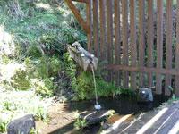 美山神田の水・写真
