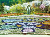 大阪府立花の文化園(フルルガーデン)・写真