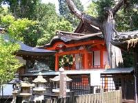 日根神社・写真