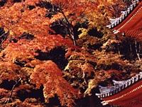 大威徳寺・写真