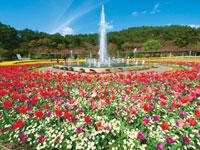 兵庫県立フラワーセンター