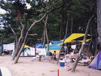 浜坂海岸・写真