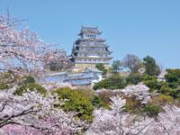 姫路城・写真