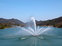 青野ダム周辺の公園