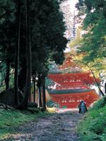 名草神社・写真