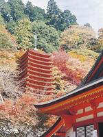 談山神社・写真