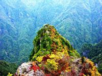 大台ヶ原の紅葉・写真