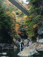 みたらい渓谷の紅葉・写真