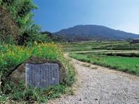山の辺の道・写真