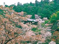 吉野山温泉・写真