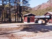 松林・山上川オートキャンプ場・写真