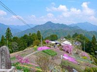 熊野古道小辺路(果無峠)