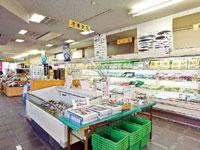 勝浦海産物センター・写真