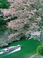 瀞峡めぐり(ウォータージェット船)