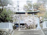 藤白神社・写真