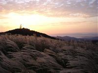 生石高原・写真
