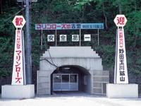 マリンローズパーク野田玉川・写真