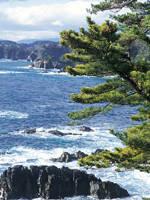 碁石海岸・写真