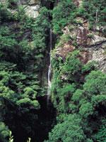 次の滝・写真