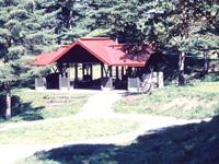 姫神山一本杉園地キャンプ場・写真