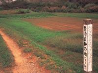 下ノ畑(賢治自耕の地)・写真