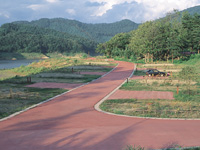 田瀬湖オートキャンプ場・写真