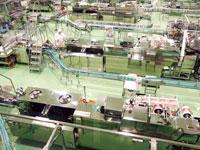 岩手ヤクルト工場(見学)・写真