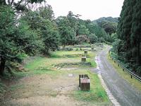 うさぎ森林公園 夢の森うさぎ