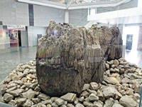 島根県立古代出雲歴史博物館・写真