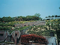 岡山市半田山植物園・写真