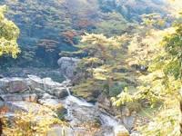 般若寺温泉・写真