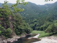 高幡森林浴の森キャンプ場・写真