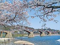錦帯橋・写真