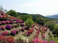熊野山公園・写真
