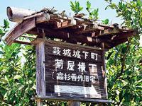 菊屋横町・写真