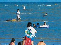 白土海水浴場潮干狩り