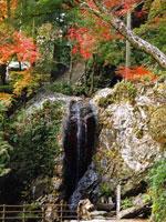 星の岩屋(星谷寺)
