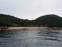 つた島キャンプ場・写真