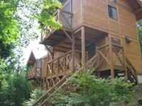 大川山キャンプ場・写真