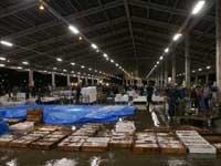 八幡浜市水産物地方卸売市場(仮設)・写真
