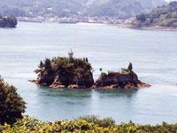 鶏小島・写真