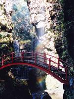 桂川渓谷キャンプ場・写真